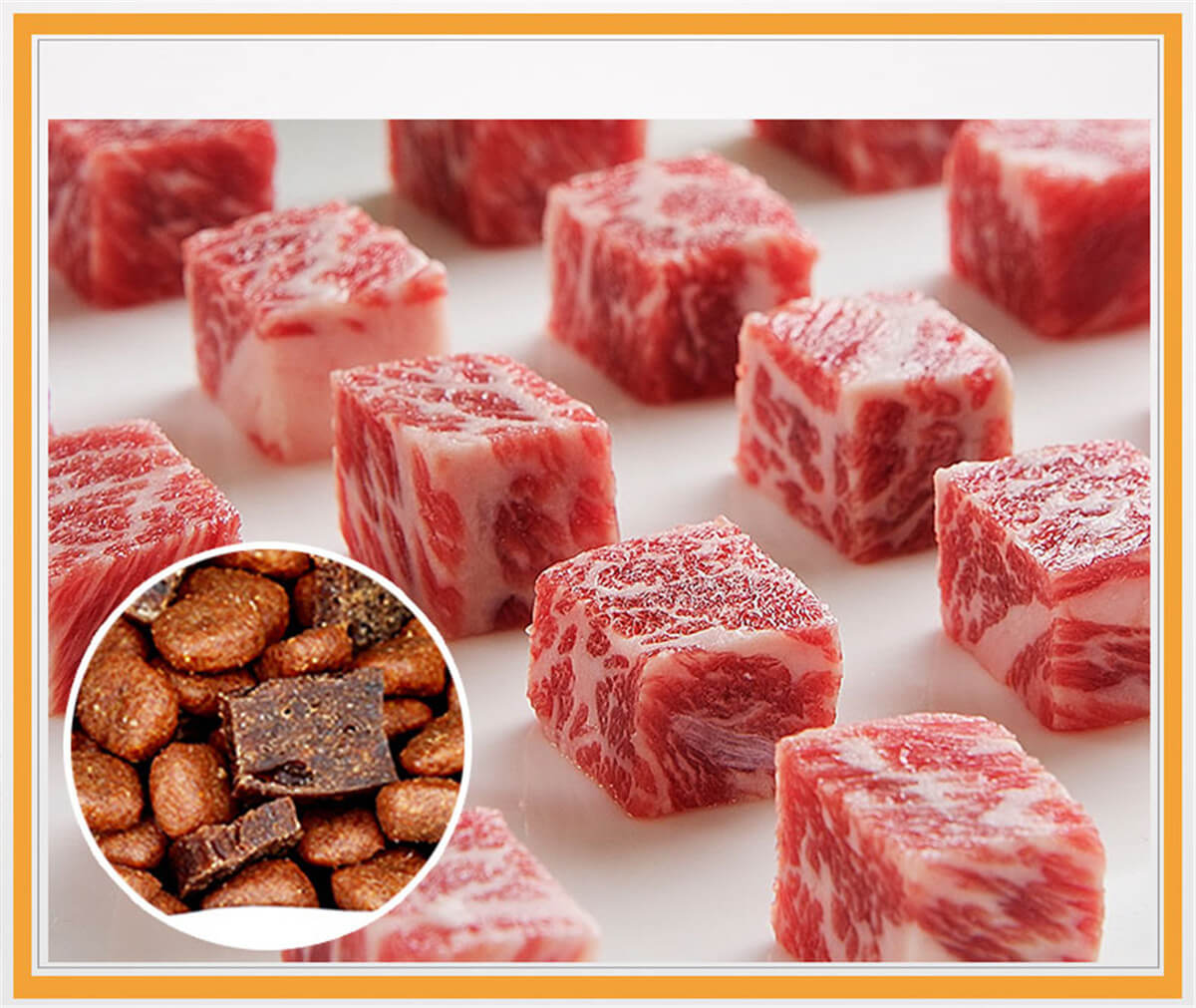 Real Beef Meat Dog Food